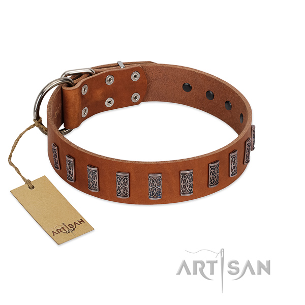 Reliable natural leather dog collar with durable buckle