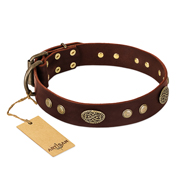 """Old-fashioned Glamor"" FDT Artisan Brown Leather Cane Corso Collar with Old Bronze Look Plates and Circles"