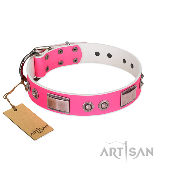 Amazing leather collar with adornments for your doggie