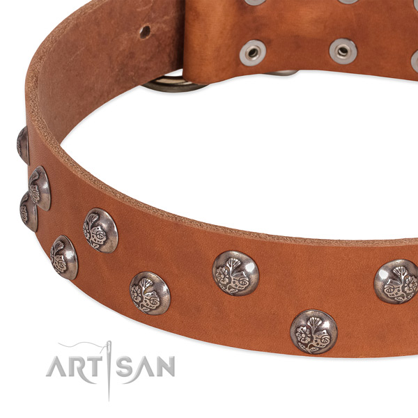 Genuine leather dog collar with reliable fittings and adornments