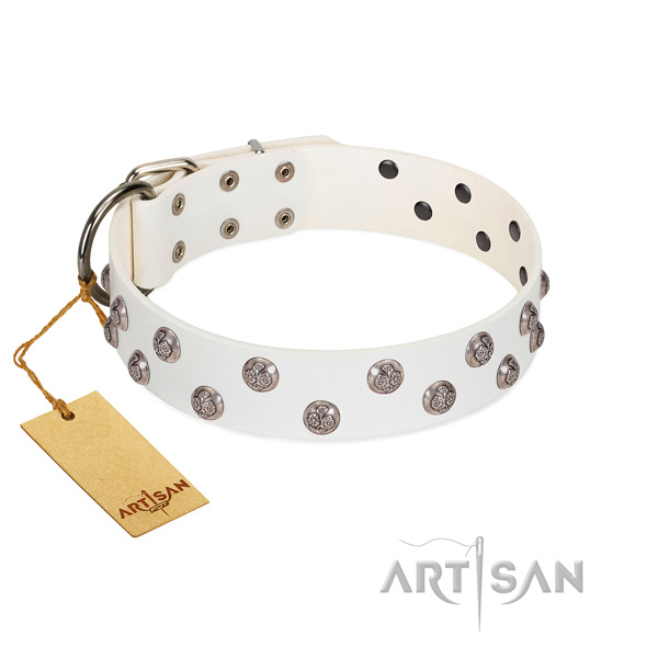 Fashionable full grain genuine leather dog collar with reliable fittings