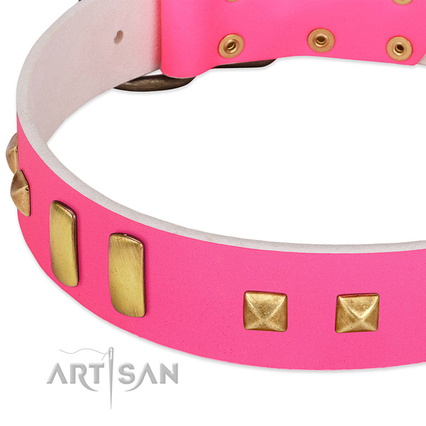 Comfortable leather collar for your beautiful pet
