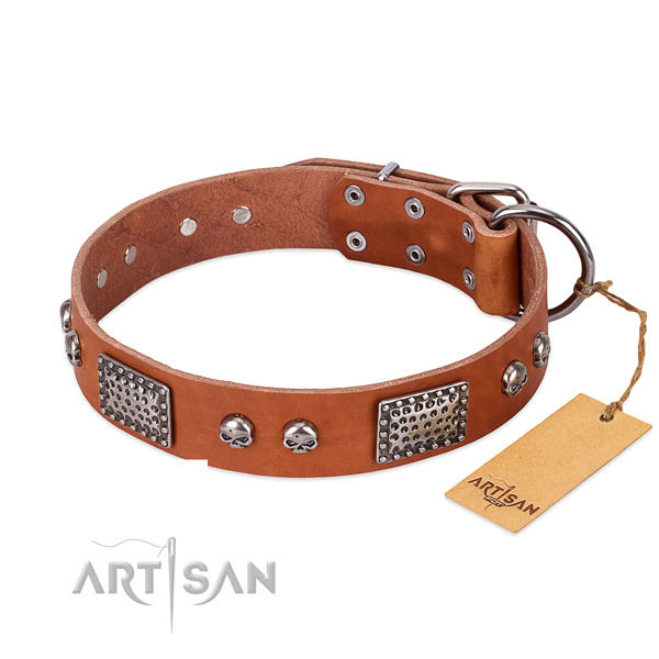 Easy wearing full grain genuine leather dog collar for daily walking your doggie