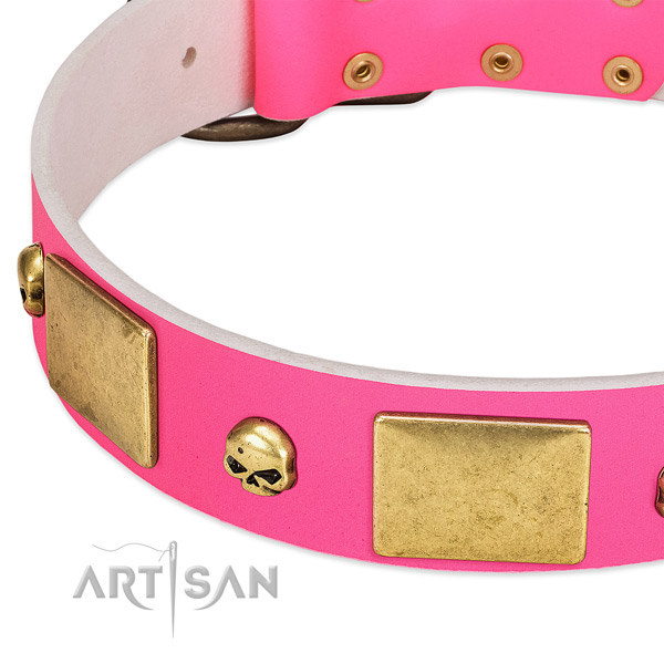 Top rate full grain leather collar with rust resistant adornments for your doggie