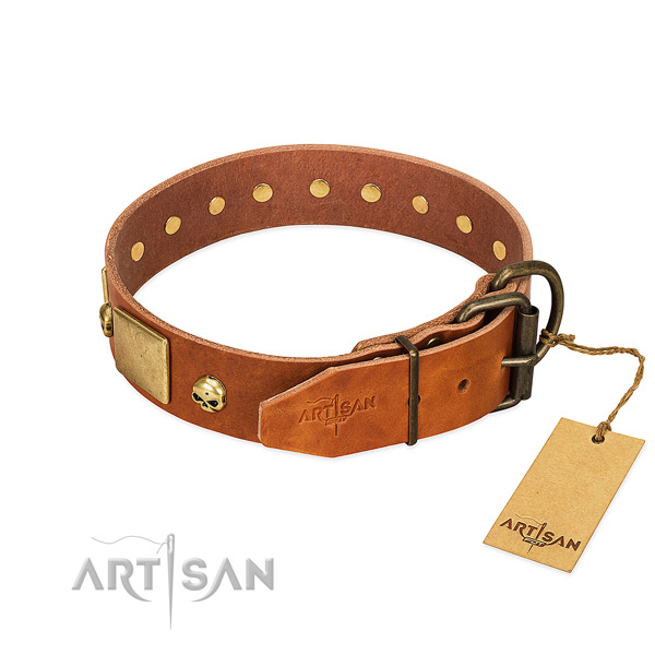 Soft full grain leather dog collar with rust resistant embellishments