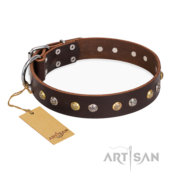 Daily use decorated dog collar with corrosion proof hardware