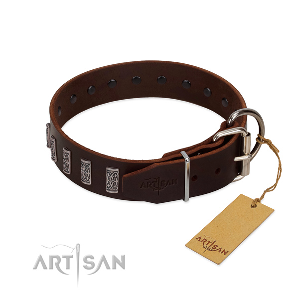 Strong fittings on genuine leather dog collar for stylish walking your pet