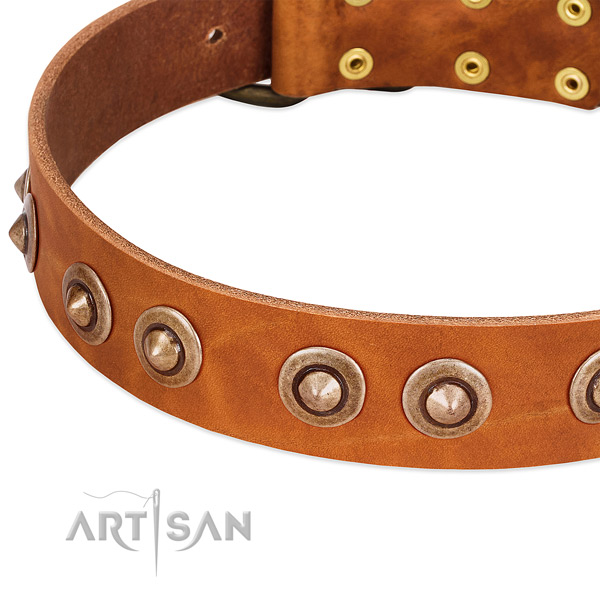 Corrosion proof buckle on full grain genuine leather dog collar for your doggie