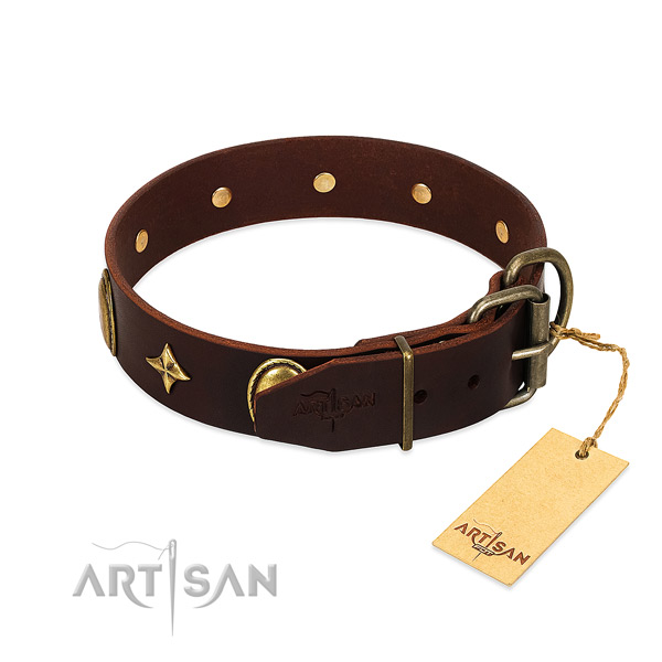 Top notch leather dog collar with corrosion resistant embellishments