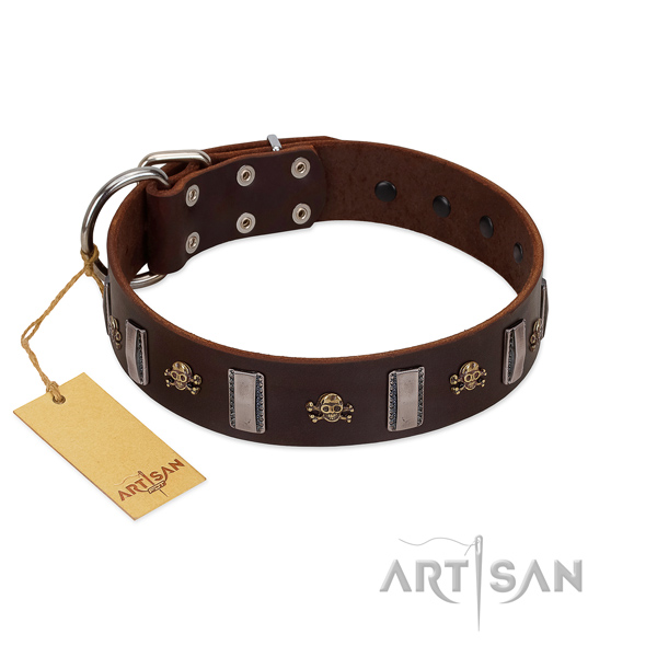 Quality full grain natural leather dog collar for your beautiful doggie
