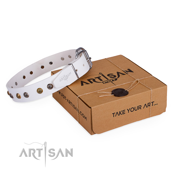 Everyday use dog collar with Amazing reliable adornments