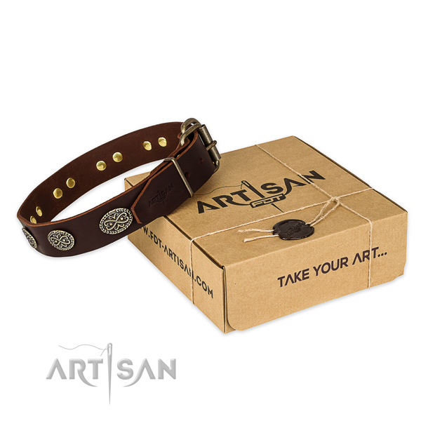 Strong traditional buckle on leather collar for your stylish dog