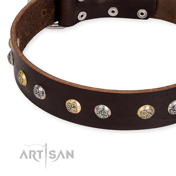 Leather dog collar with stylish design corrosion proof studs