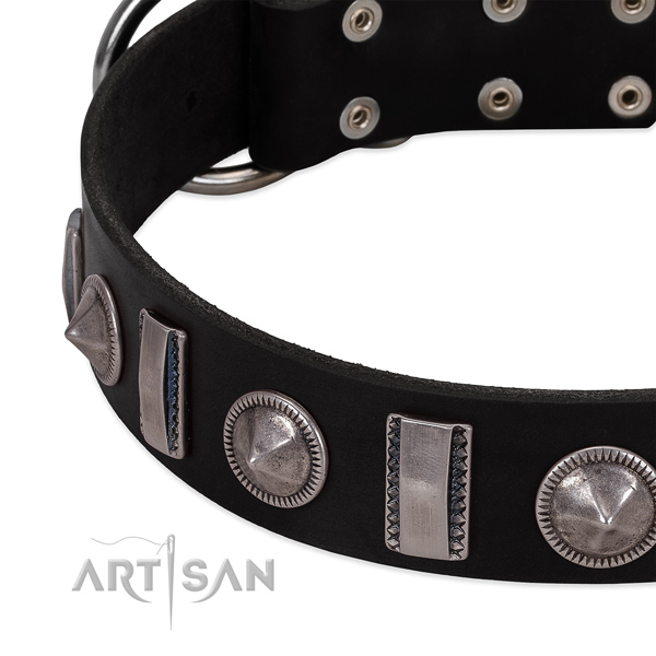 Extraordinary full grain natural leather dog collar with strong studs