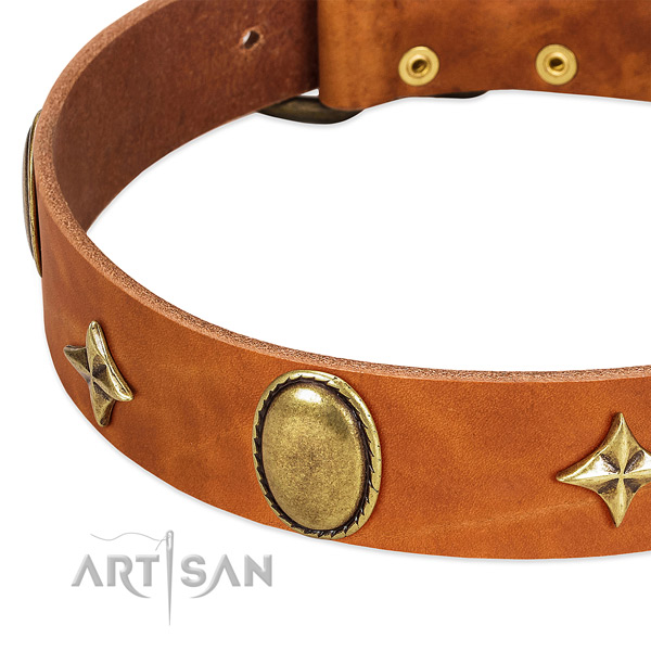 Reliable natural leather dog collar with corrosion resistant buckle
