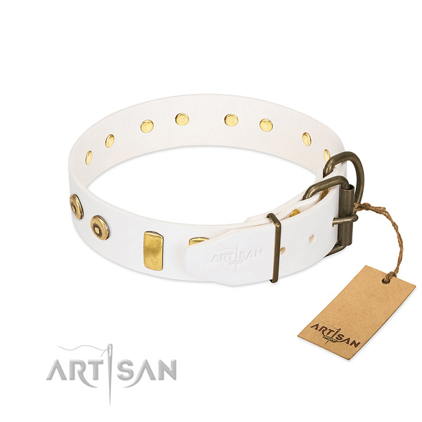 Exceptional adorned full grain natural leather dog collar of soft material