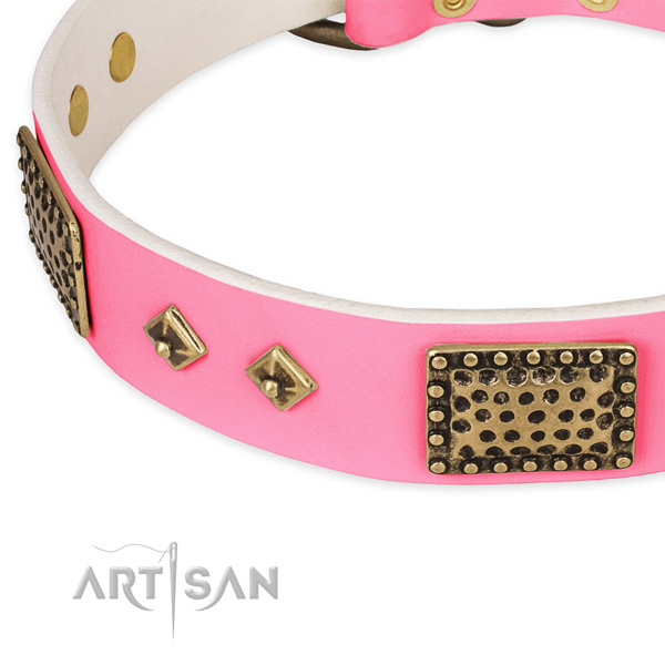 Genuine leather dog collar with embellishments for daily walking