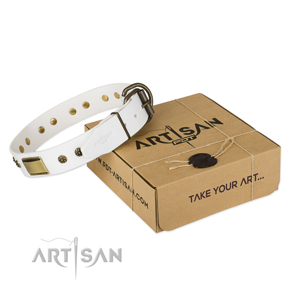Handmade full grain leather collar for your stylish pet