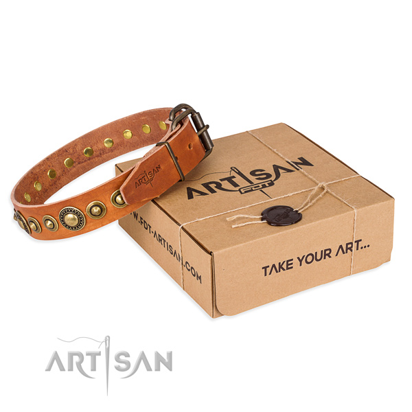 Best quality full grain genuine leather dog collar handcrafted for daily walking