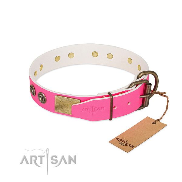 Reliable traditional buckle on natural genuine leather collar for stylish walking your canine