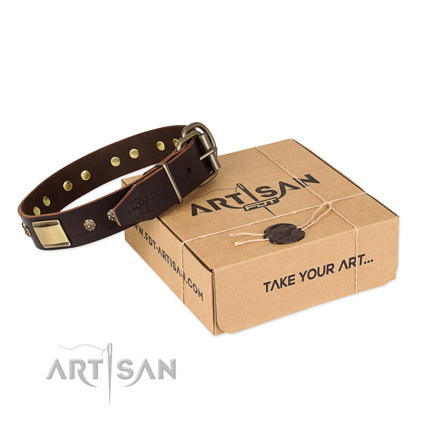 Amazing full grain natural leather collar for your impressive four-legged friend