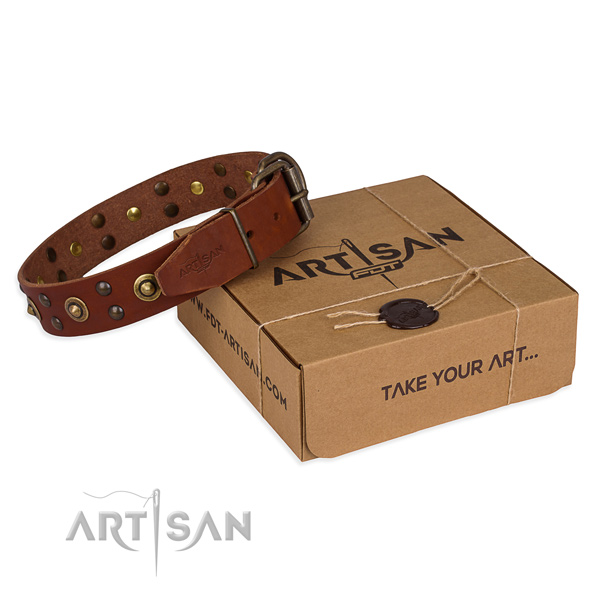 Rust-proof traditional buckle on leather collar for your handsome four-legged friend