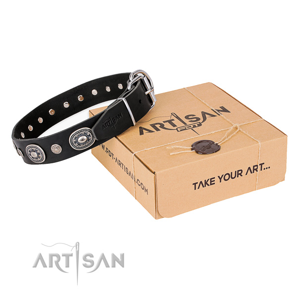 Strong full grain leather dog collar made for daily walking