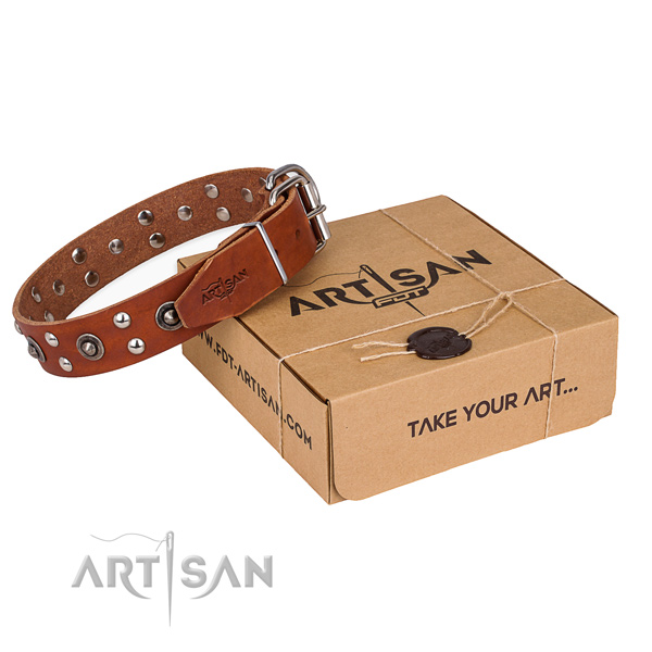 Rust resistant fittings on genuine leather collar for your beautiful dog