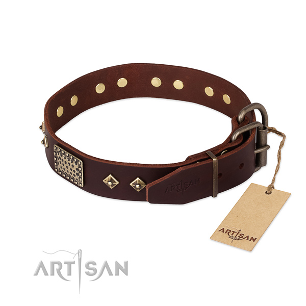 Full grain natural leather dog collar with reliable traditional buckle and adornments