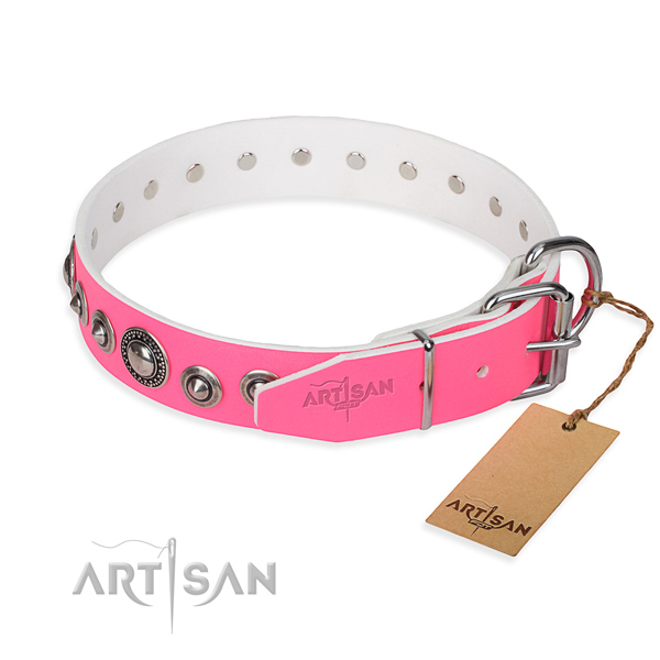 Full grain leather dog collar made of top notch material with reliable embellishments