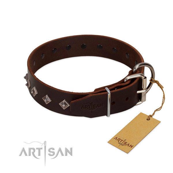 Significant adornments on full grain leather collar for daily use your doggie