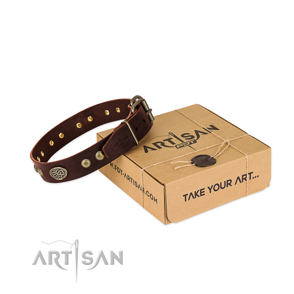 Corrosion proof fittings on leather dog collar for your dog