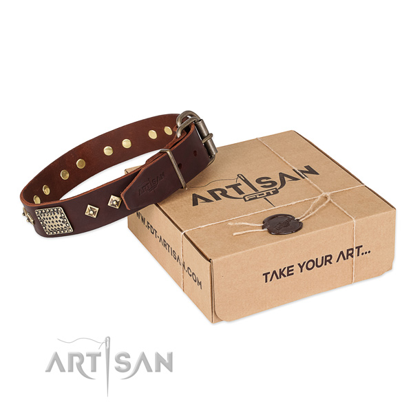 Stunning genuine leather collar for your stylish canine
