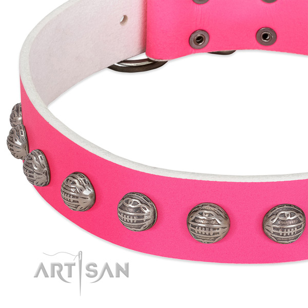 Everyday walking natural leather dog collar with unique embellishments
