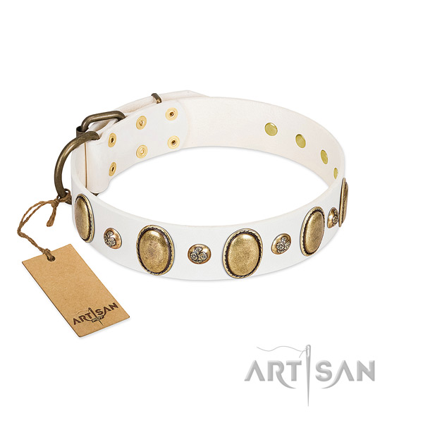 Full grain leather dog collar of gentle to touch material with extraordinary decorations