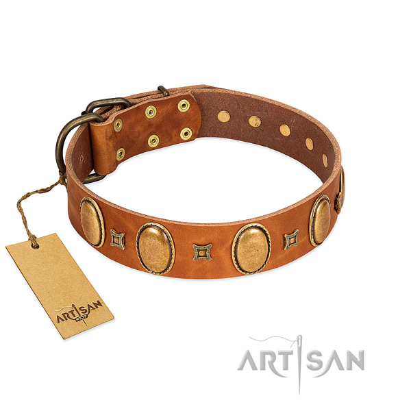 Genuine leather dog collar with stylish embellishments for comfy wearing
