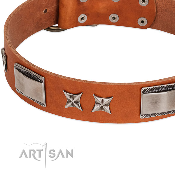 Reliable full grain genuine leather dog collar with rust resistant fittings