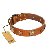 """Celtic Tunes"" FDT Artisan Tan Leather Cane Corso Collar Adorned with Stars and Squares"
