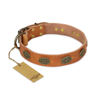 """Magic Amulet"" FDT Artisan Tan Leather Cane Corso Collar with Oval Studs"