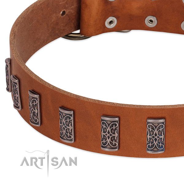 Handcrafted full grain natural leather dog collar with corrosion proof D-ring
