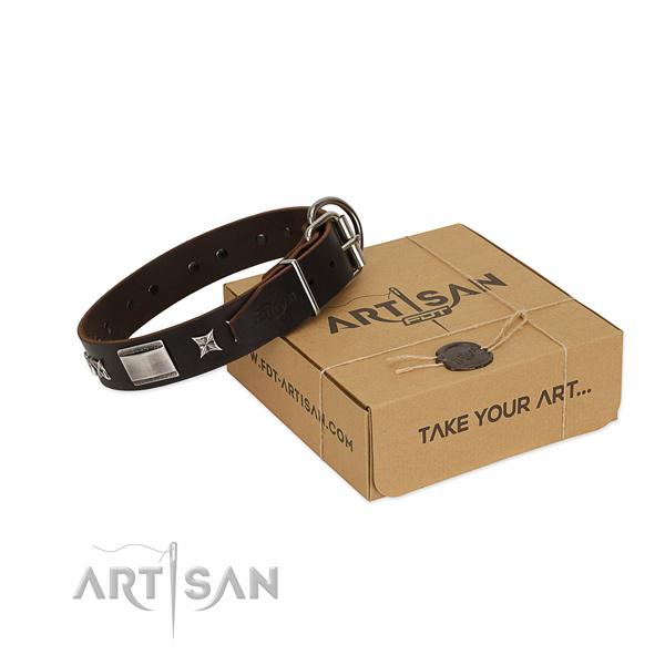 Easy wearing collar of full grain leather for your beautiful doggie