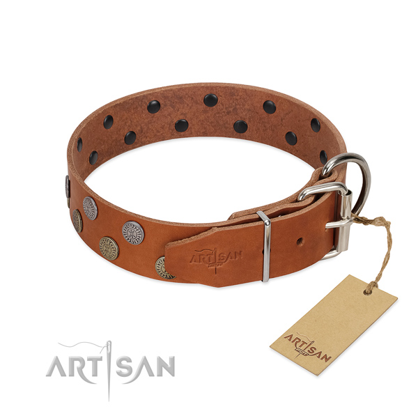 Rust-proof fittings on full grain natural leather dog collar for daily walking