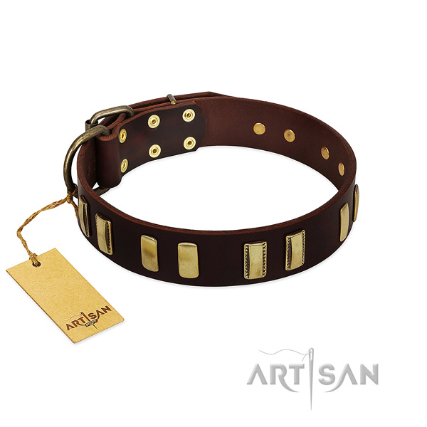Leather dog collar with reliable D-ring for easy wearing
