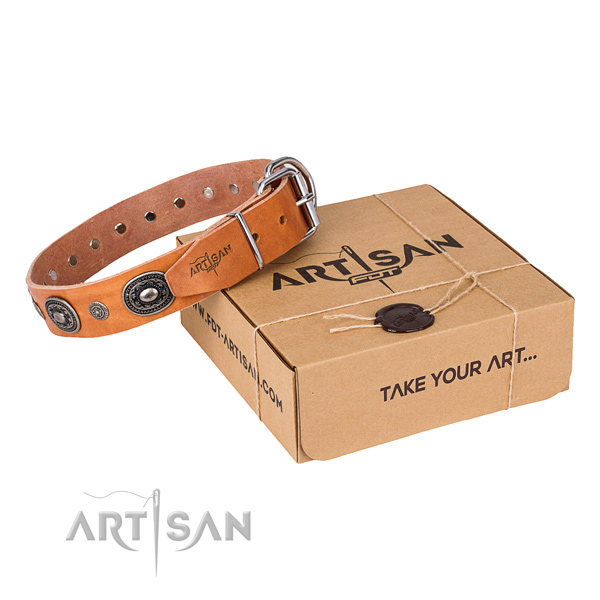 High quality full grain genuine leather dog collar handmade for stylish walking