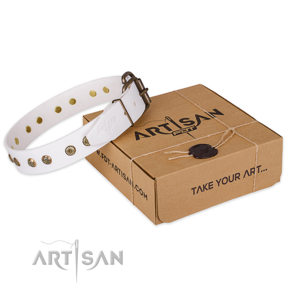 Corrosion proof traditional buckle on genuine leather collar for your lovely doggie