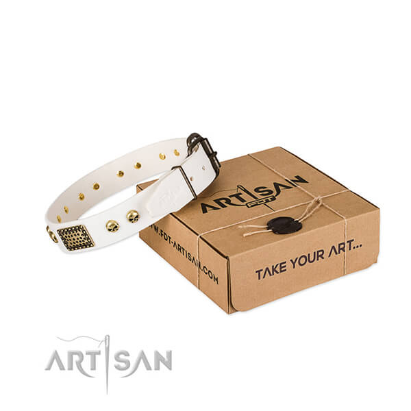 Reliable studs on dog collar for daily walking