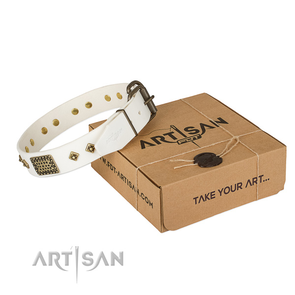 Designer genuine leather collar for your beautiful four-legged friend