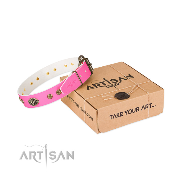 Durable hardware on natural leather dog collar for your canine