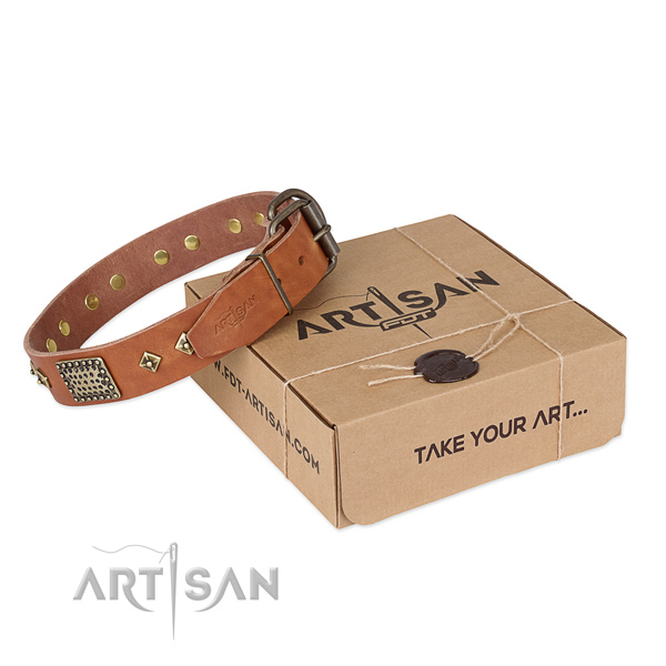 Unusual full grain natural leather collar for your lovely canine