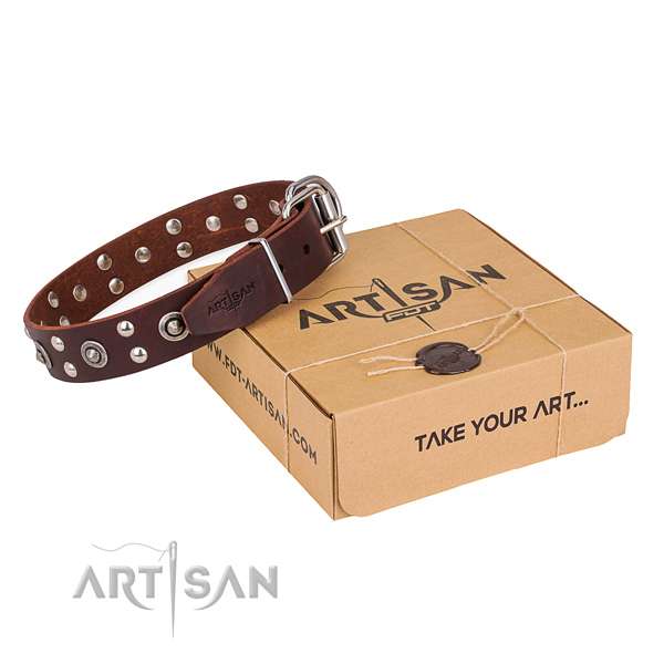 Durable hardware on full grain leather collar for your handsome four-legged friend